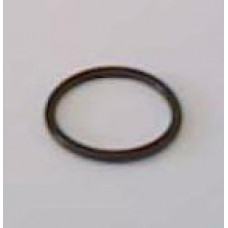 Oil Injector Cap O-Ring